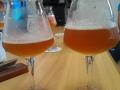 visita-bier