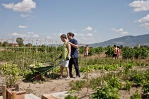 fattorie-sociali