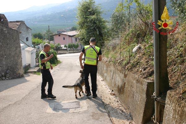 salvataggio-cani (2)