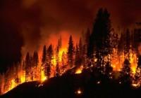 incendi-boschivi[1]