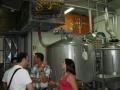 beer (8)
