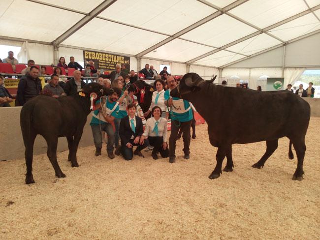 Al via l'ottava edizione della mostra nazionale della bufala mediterranea