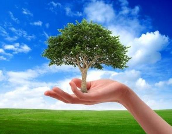 Unisannio dedica la giornata dell'ambiente a donne e sviluppo sostenibile