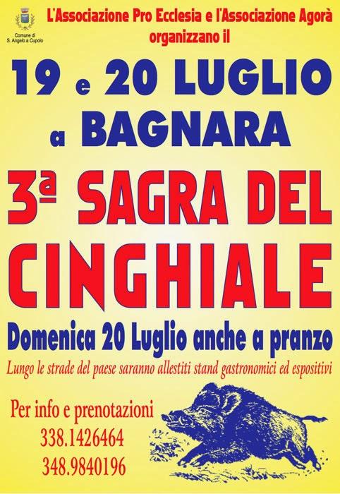 Al via, sabato 19, la 'Sagra del cinghiale' a Bagnara