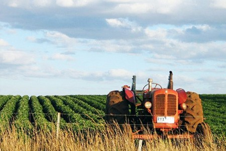 Congelato il pagamento dell'Imu agricola