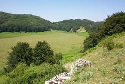 Inchiesta su fondi europei per i lavori nel Parco Taburno-Camposauro, l'Ue risponde a Pedicini