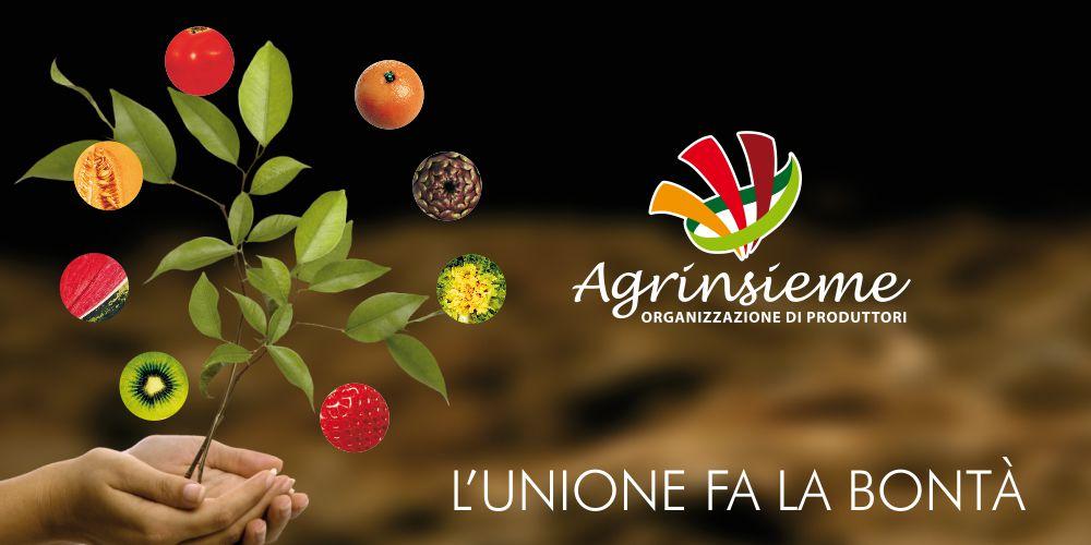 Lunedì giornata di mobilitazione promossa da Agrinsieme per sensibilizzare sui temi che segnano il futuro delle imprese agricole