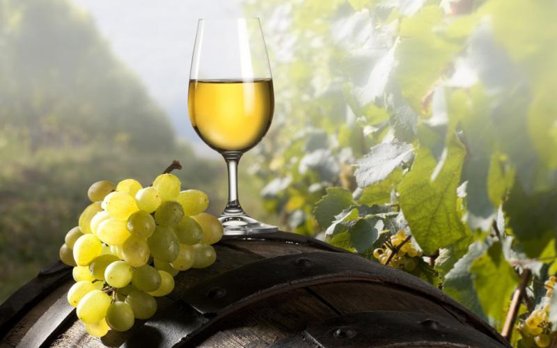 Premiati 'I Migliori Vini Italiani 2015', tra i bianchi c'è la Falanghina targata Guardiense