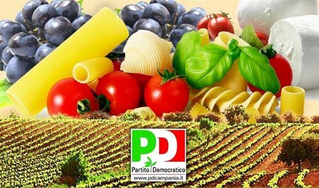 A Telese Terme focus territoriale del Pd sulla filiera vitivinicola e olivicola