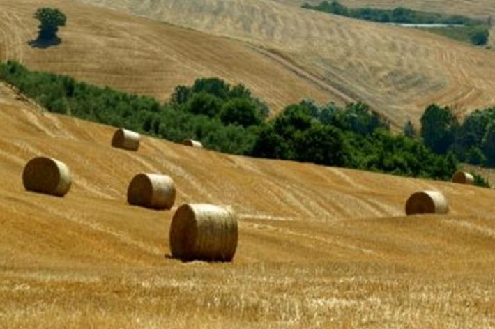 Imu agricola, dal Governo l'ok alla revisione dei criteri di esenzione