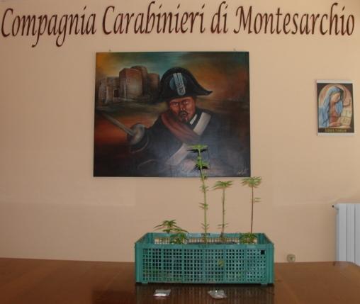 Effettuati controlli antidroga dai Carabinieri ad Airola e Montesarchio