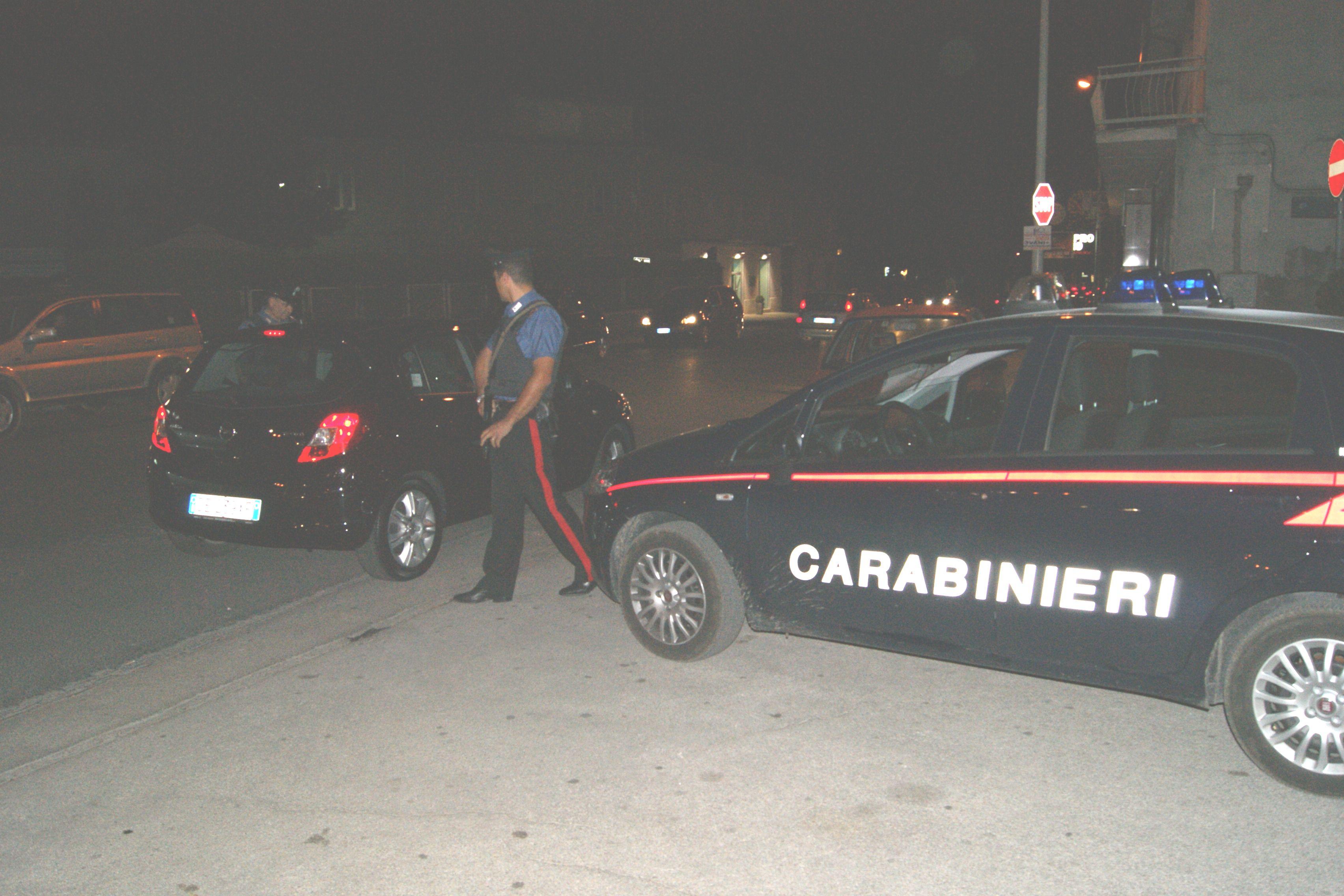 Carabinieri, controlli e denunce per contrastare l'illegalità