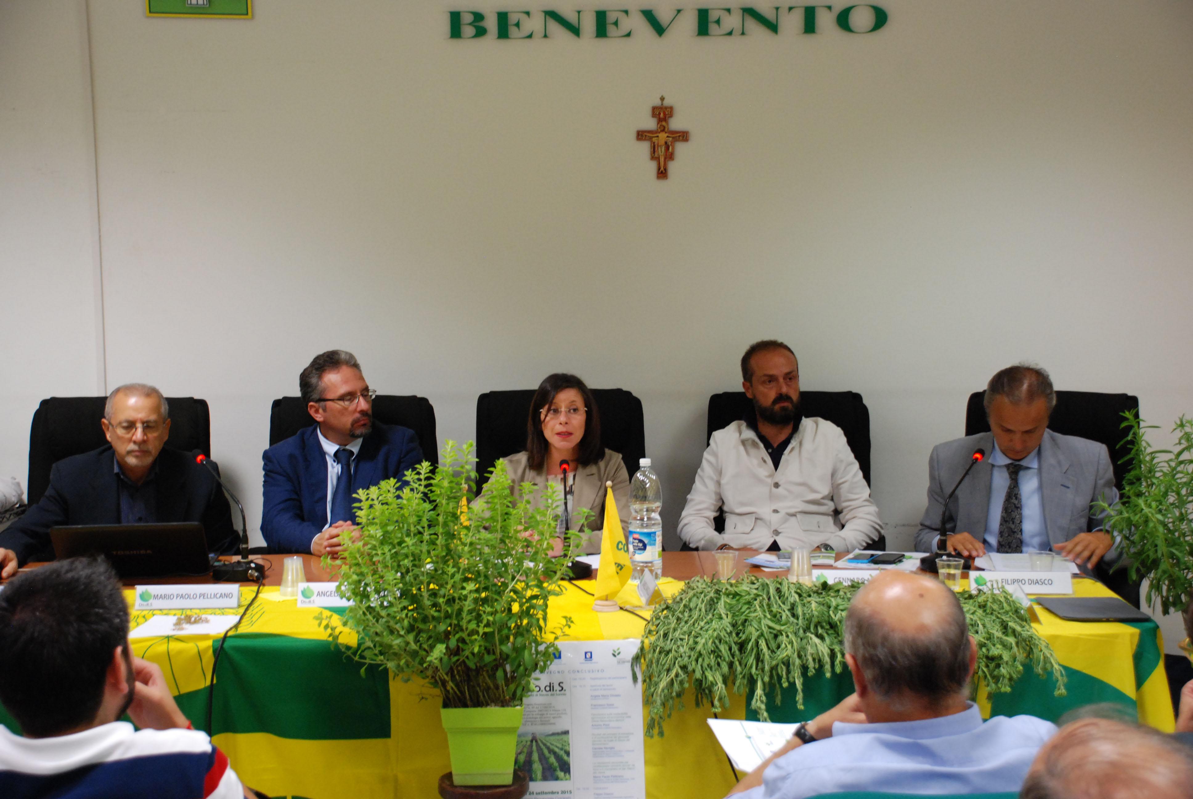 Concluso il 'Progetto Do.di.S Dolci di Stevia del Sannio', ora la realizzazione di una filiera ad hoc
