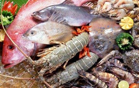 Sicurezza alimentare, ancora sequestri di prodotti ittici in provincia di Benevento