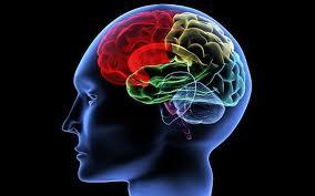 Cassazione, riconosciuta indennità di accompagnamento anche per patologie neurologiche