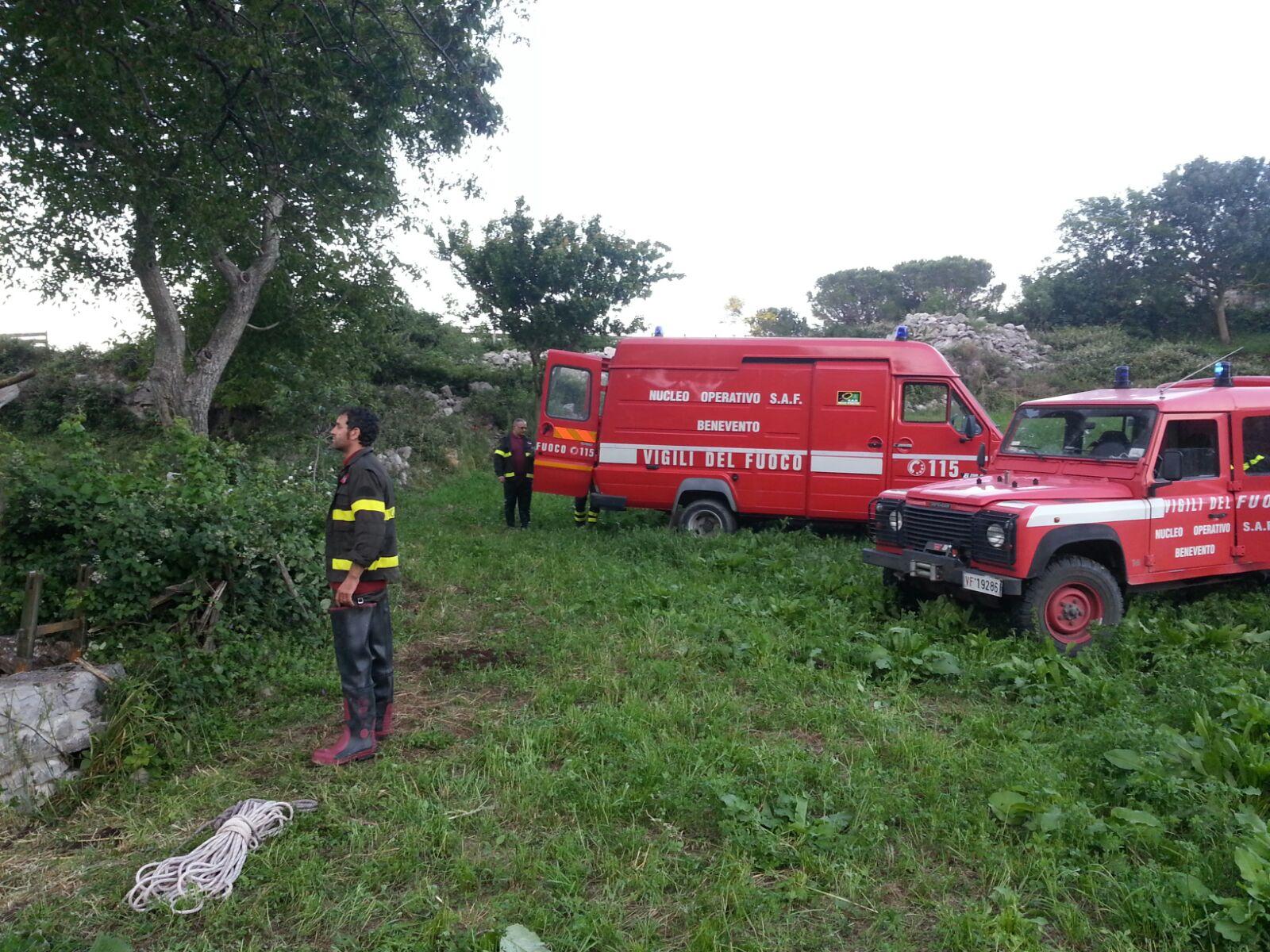 Intervento dei Vigili del Fuoco per salvare un vitellino caduto in un pozzo