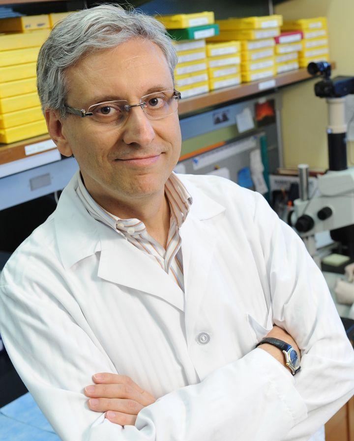 'Terapia intelligente', intervista allo scienziato sannita Antonio Iavarone
