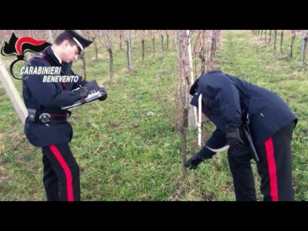 Operazione San Filippo, arrestati 5 uomini che vessavano imprenditori vitivinicoli sanniti
