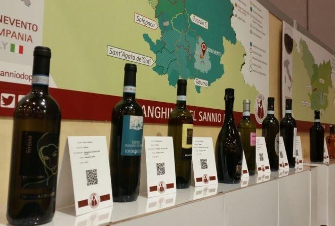 Al via, da domani, il wine tour nel Sannio alla scoperta delle potenzialità del territorio viticolo sannita