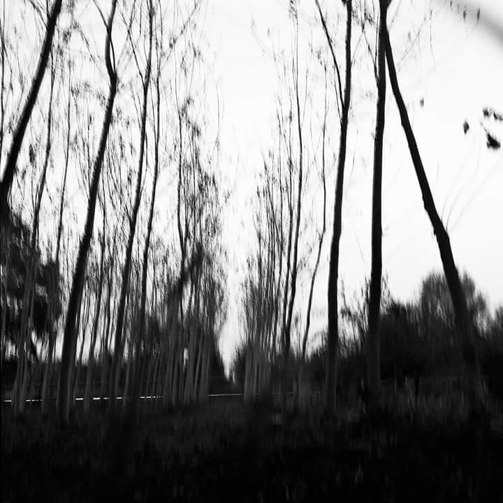 Mostra 'Dall' inconscio al conscio' e presentazione nuovo Laboratorio di Fotografia al Labus di Benevento