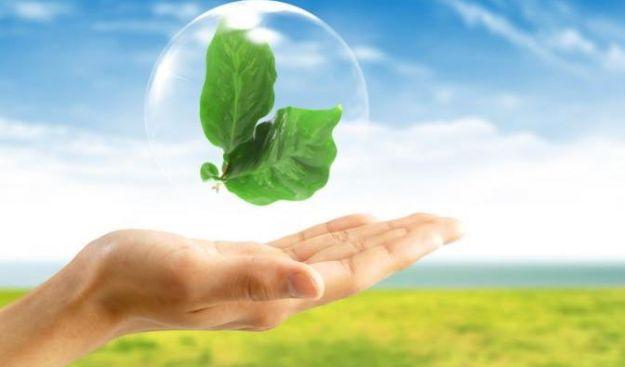 Trasmessa al Parlamento la Relazione ministeriale sullo Stato dell'Ambiente