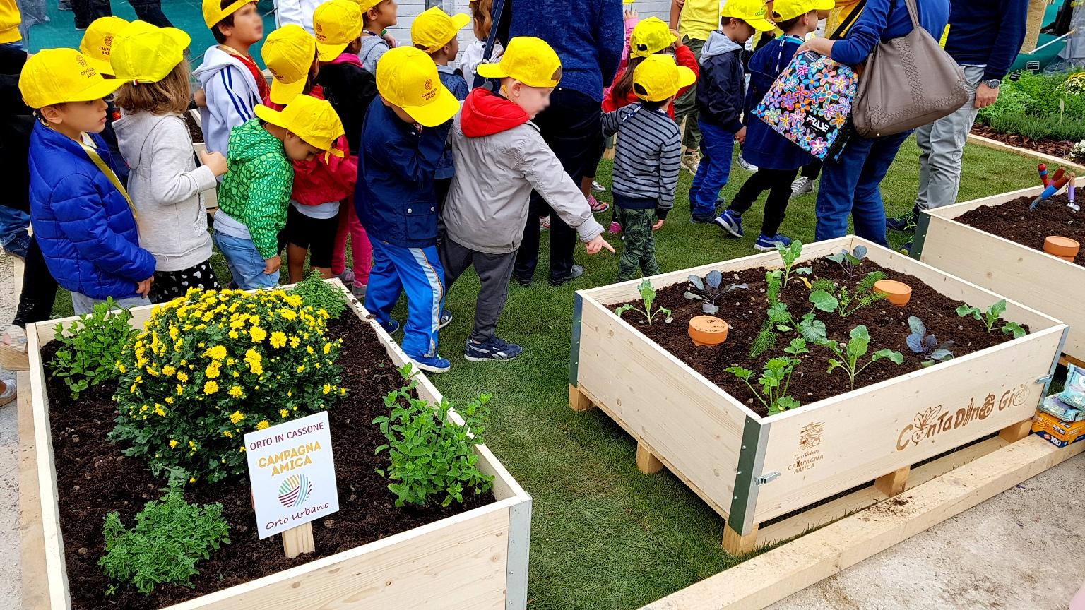 Coldiretti, alunni a lezione dai contadini. In Campania 76 fattorie didattiche e progetti green negli Istituti