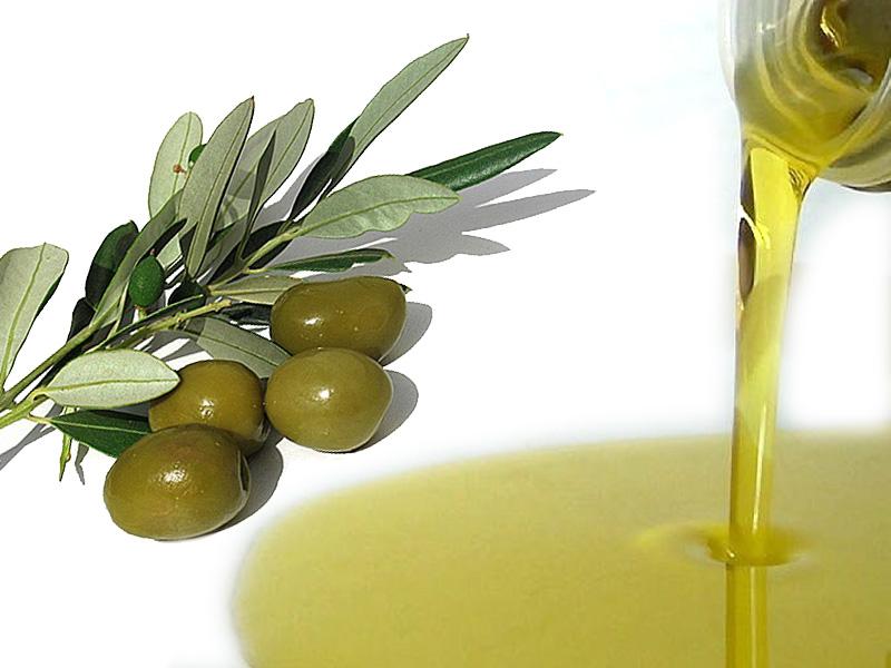 Olio, varietà autoctone più forti contro il climate change