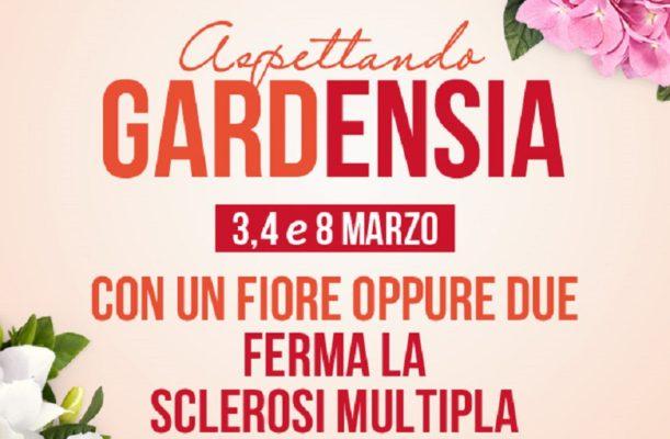 Fino all'8 marzo, nelle piazze di Benevento e provincia, 'Benvenuta Gardensia' contro la sclerosi multipla