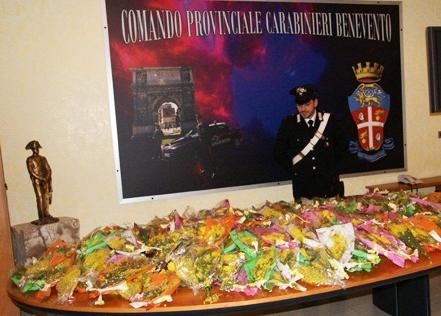 Benevento, controlli e sequestri a venditori abusivi di mimose