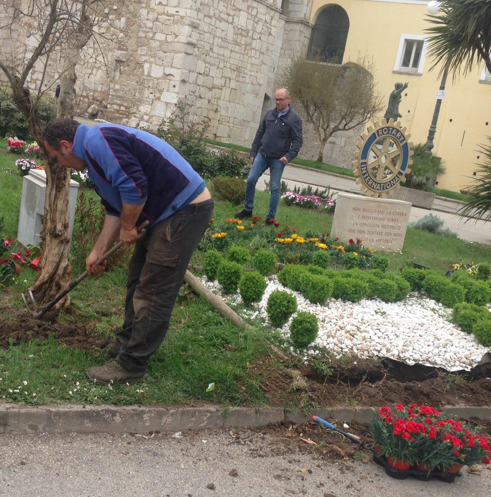 Benevento, atti vandalici all'aiuola di piazza Castello. La condanna del comitato di quartiere