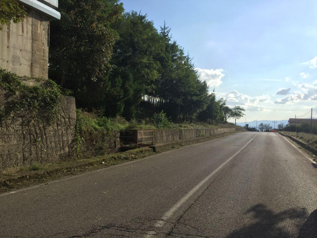 Completati i lavori di taglio delle erbe invadenti nel comparto Titerno-Tammaro