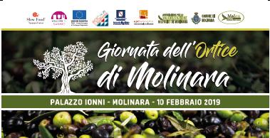 Molinara celebra il suo prodotto tipico, l'Olio d'Ortice, con un concorso premio