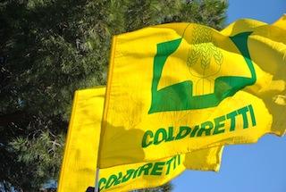 Coldiretti, anche Benevento partecipa ai 'Villaggi della Salute'