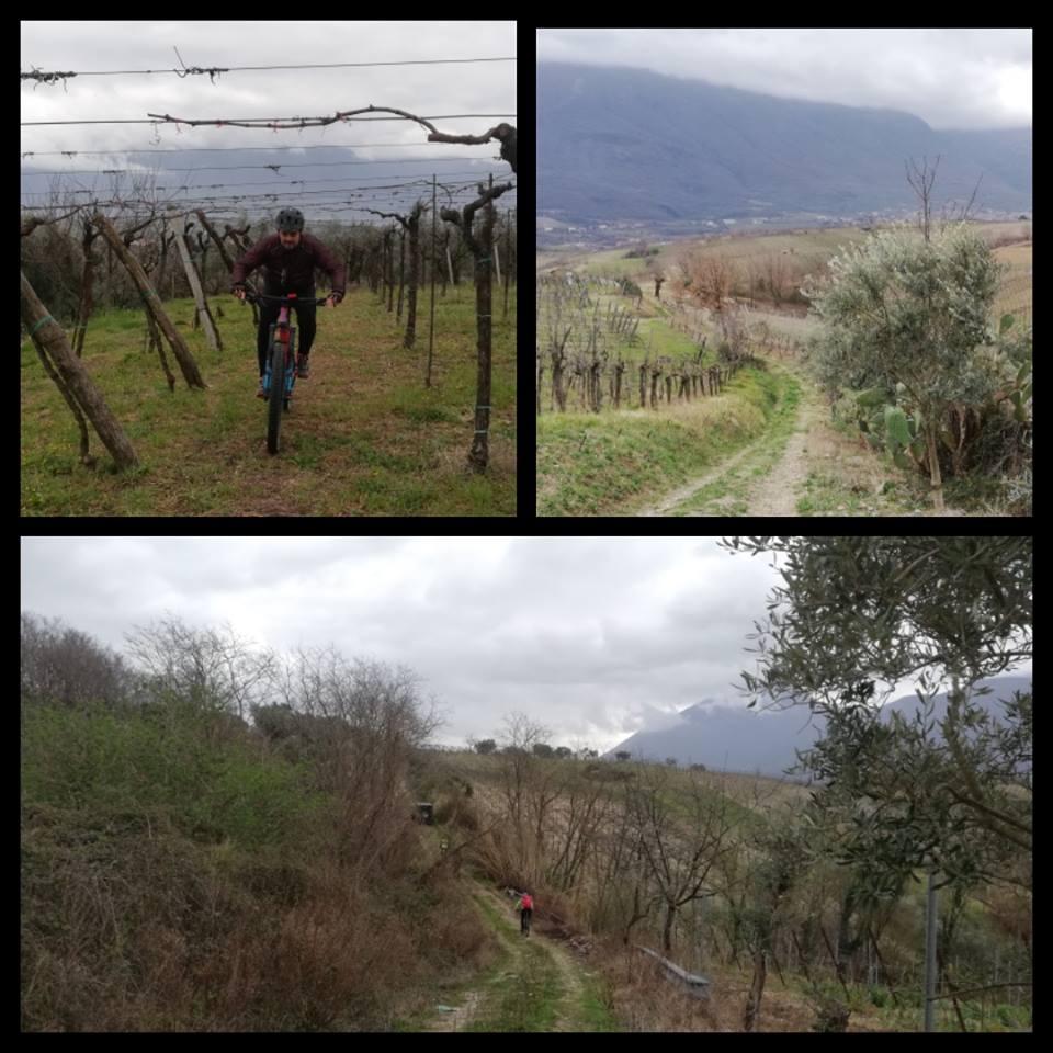 Dal 21 marzo, a Castelvenere, anteprima Vinitaly con 'Camaiola Wine Festival'