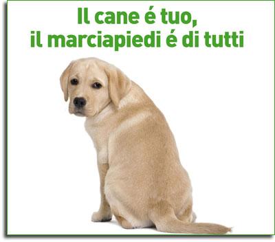 Benevento, multe per chi non provvede a rimuovere i rifiuti canini dalle aree pubbliche