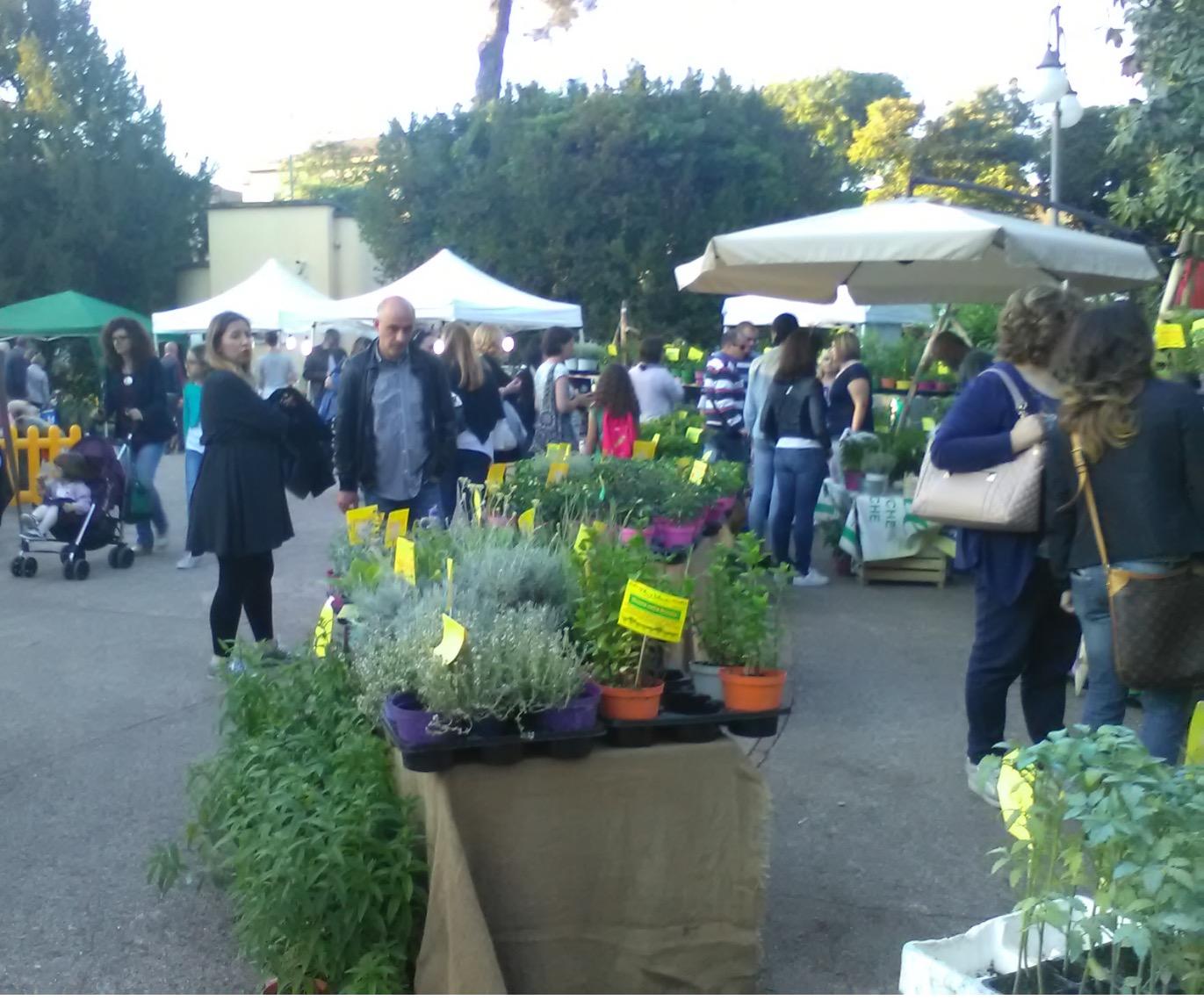 Tutto pronto per 'Benevento città in fiore' nella villa comunale dal 17 maggio