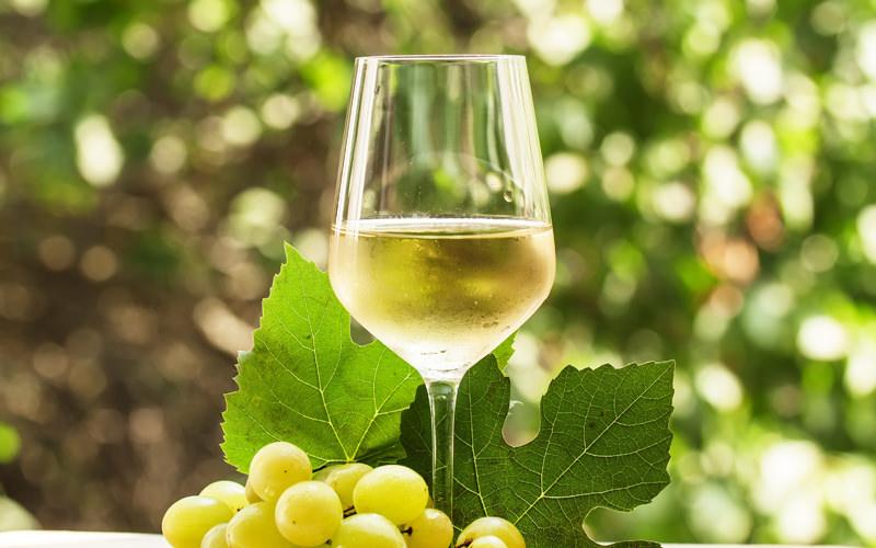 Export agroalimentare, Coldiretti: Campania +7% nel primo trimestre 2019. Frena il vino ma Sannio in controtendenza