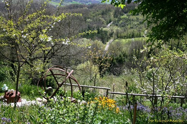 Appuntamenti in Giardino, aderisce anche l'Orto Botanico del Sannio di Campolattaro