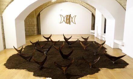 Museo Arcosoli, prorogata al 30 agosto prossimo la mostra di Laura Niola