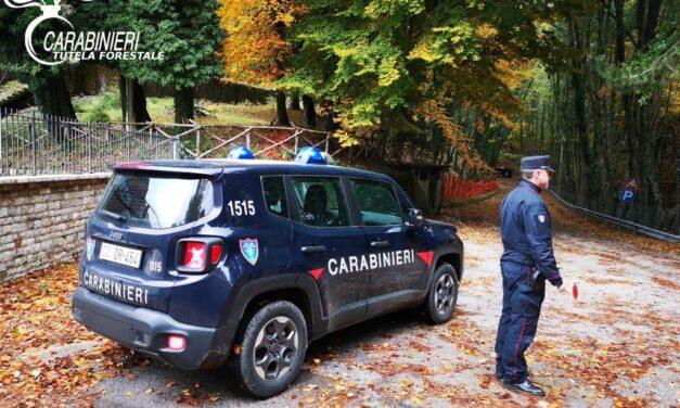 Accensione roghi e parcheggi non consentiti, scattano multe nell'area Taburno-Camposauro
