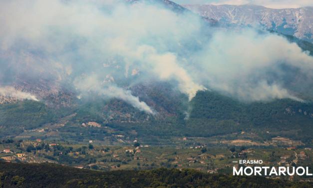 """Brucia il Monte Erbano, Mortaruolo: """"Ferita nel cuore verde del Sannio"""""""