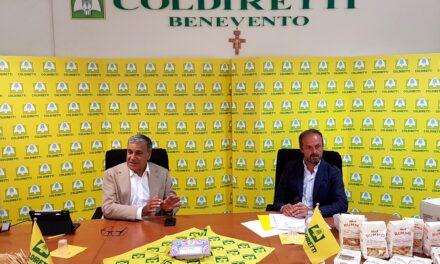 Filiera pasta, Coldiretti: con Rummo obiettivo 100% granì Sannita