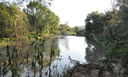 Messa in sicurezza fiume Calore in località Pantano, la Provincia approva il progetto